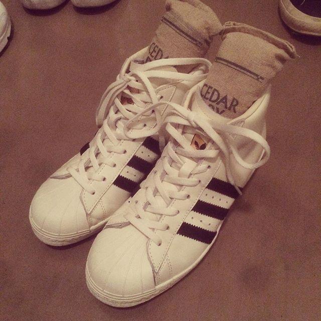しじみ先輩に続いてスニーカーです︎先日、新しいスニーカーを購入しました♪スーパースターのハイカットってめずらしいですよね!ハイカット好きな私は見つけてすぐにお持ち帰りしてしまいました︎シダードライを入れて、除湿&形をキープしながら大切に保管しています︎ #靴磨き女子部 #靴磨き女子部せんちゃん #adidas #superstar #アディダス #スニーカー #ハイカット #ホワイトレザー