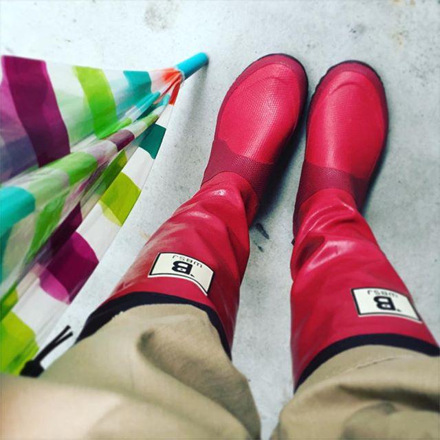 雨の日こそ明るい色を差し込みます☆#野鳥の会 #バードウオッチング #長靴 #限定復刻色 #靴磨き女子部 #しじみ #Wildbird #Bが鳥さん