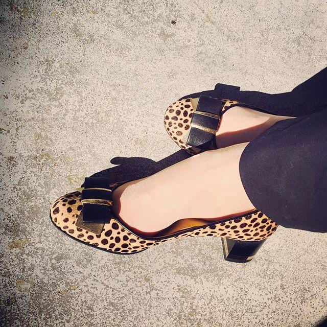 秋らしくハラコ素材のパンプスを。歩きやすさがありがたい一足。#靴磨き女子部#本日の足元チラ#DIANA#チャンキーヒール#ハラコ#パンプス