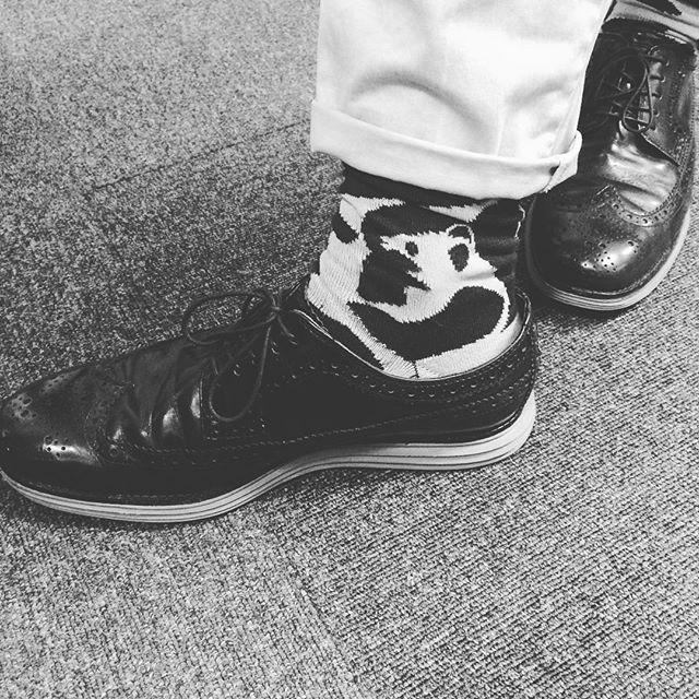 バクバクコアラです先輩の足元コールハーンのルナグランドが可愛くてパチリ。見えますか?靴下は動物ひっそりと︎みんなが「履きやすい︎」と絶賛なので、わたしも一足欲しいなぁぁ。。#コールハーン#ルナグランド#colehaan #lunaground #パンダ #あしもと倶楽部 #靴磨き女子部