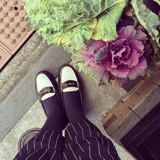晴れ晴れした気持ちいい朝ですね!最近お気に入りのbassのローファーです♪HP: @shoecaregirls #bass#ghbass#wayfarer #ローファー#ペニーローファー#靴磨き女子部#バクバクコアラ#あしもと倶楽部