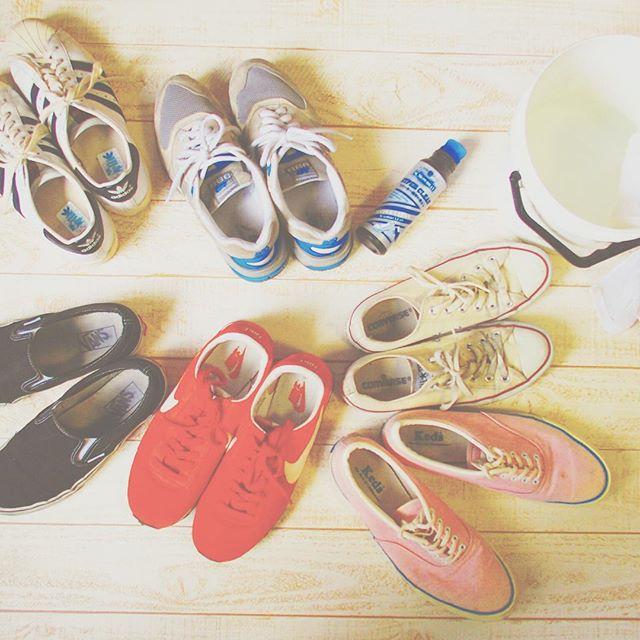 そろそろ、洗っちゃお〜と♩M.mowbrayハイパークリーン & 濡れタオルのスニーカーケア¨¨じゃぶじゃぶと水につけての丸洗いしなくていいのです︎HP: @shoecaregirls#shoecare #sneakers #addidas #newbalance #vans #nike #keds #converse #shoecaregirls #足もと倶楽部 #靴磨き女子部 #バクバクコアラ