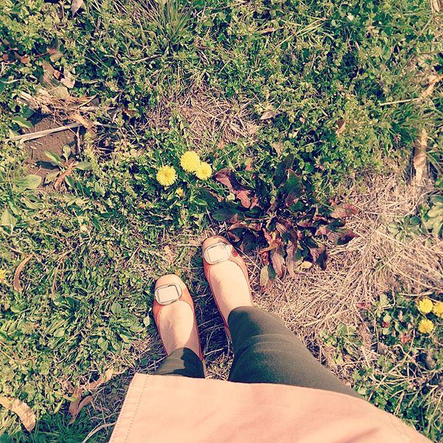 春がやって来ました。桜ももうすぐですね桜色のパンプスに桜色のトレンチコートですっかり春の気分ですHP:@shoecaregirls#靴磨き女子部 #ハスキー犬 #ハスキーケン #shoecaregirls #shoe #靴 #くつ #パンプス  #ヒール #washington #春 #靴のこと #avv #本日の足元チラッ #本日のコーデ #桜色 #トレンチコート #足元倶楽部 #足元くら部