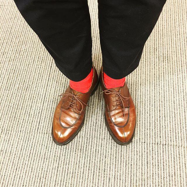 Hey!spring! 遅れをとるんじゃないよ!HP:@shoecaregirls#jmweston #598 #brown #spring #sakura #足元くら部  #エスプリ軍曹参上 #エスプリ #france #shoes #kicks #fashion #洒落乙 #socks #レッドソックス命 #赤い靴下は勇気をくれます #赤い靴下 #赤い公園 #的なノリでした #ブリテッシュでもフレンチでも赤い靴下 #推し靴下 #UNIQLO #mackintosh #shoecare #shoecaregirls #靴磨き女子部  #靴磨き #englishguild