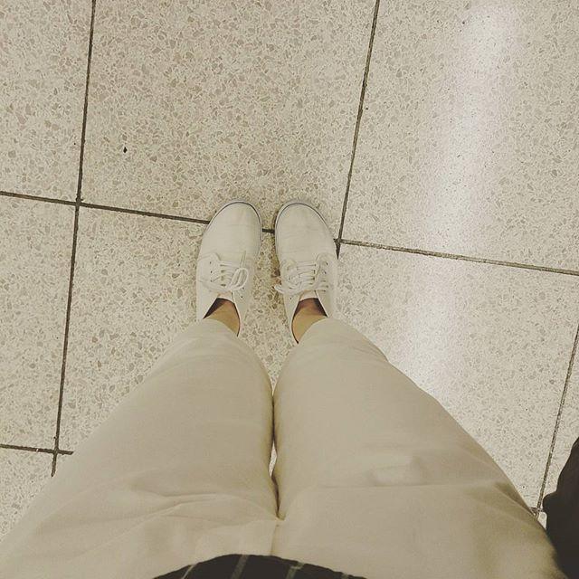 今日も暑いですね 本日は青系トップス×白パンツ×白スニーカー。青系と白は体感温度が下がる組み合わせスタイルだけでなく目でも涼しく感じたいものです#靴磨き女子部 #ハスキー犬 #ハスキーケン #くつのこと #靴 #スニーカー #ホワイト #体感温度 #本日の足元チラッ #vans #夏HP:@shoecaregirls