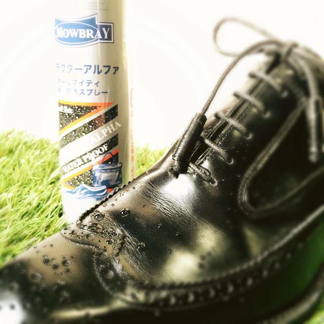 明日、東京は雨予報ですね。自分の靴も家族の靴も防水スプレーで水から守りましょう☂傘とかパンツの裾にも使えますHP:@shoecaregirls #靴磨き女子部#足元倶楽部#雨の日#防水#雨に負けるな#傘