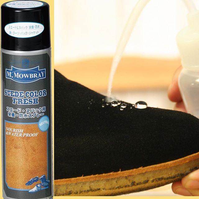 ブラッシングとM.モゥブレィ・スエードカラーフレッシュをスプレーするだけ。防水効果抜群です。ブラックのスエードパンプス、白っぽくなっていませんか?? 防水効果+保革(適度な油分と栄養補給)足元美人には必須です! M.モゥブレィ スエードカラーフレッシュprice:¥1500+taxcolor:ニュートラル(無色) HP:@shoecaregirls #shoecaregirls#靴磨き女子部#靴磨き女子部ピンクレンジャー#mowbraymania#mowbray#スエードパンプス#防水スプレー#実用的#必須アイテム#足元倶楽部#靴美人#靴磨き#シューケア#スエードのお手入れ