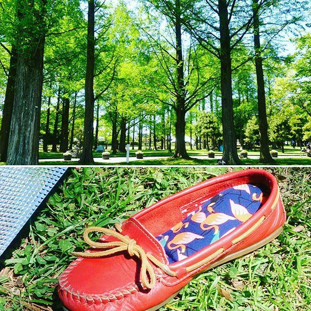 気分うきうき新緑がきれいな行楽シーズン。外でシートを敷いて仲間と食べるランチは格別脱いだ靴も柄インソールが華やかさを演出気分もより上がります!#靴磨き女子部 #shoecaregirls #ハスキー犬 #ハスキーケン #インソール #フラミンゴ #かわいいインソール #中敷き #ポップソフトクッション #minnetonka #ミネトンカ #パンプス #スムースモカシン #革靴好き #mowbraymania #モゥブレィ同盟 #行楽シーズン #お散歩が楽しい季節 #新緑 #公園でランチHP:@shoecaregirls