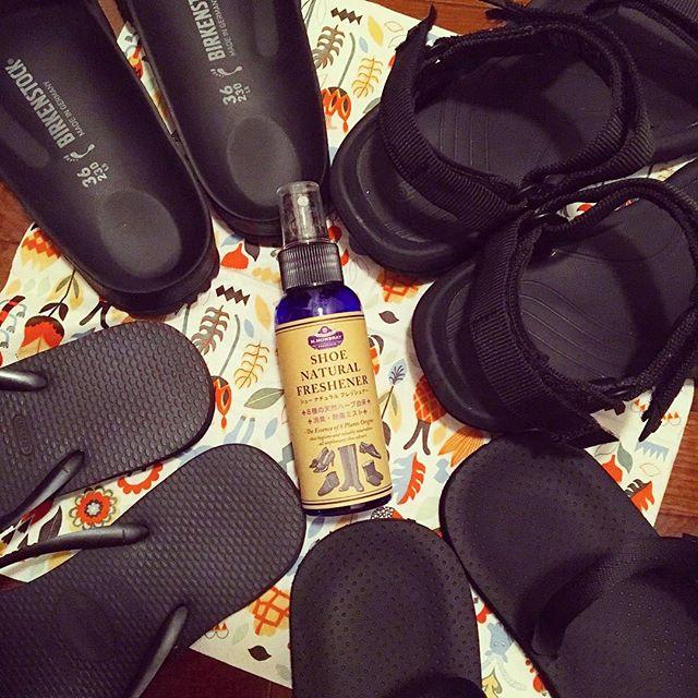 海やキャンプ、フェスなどで大活躍の楽ちんサンダルたちは「M.モゥブレィ プレステージ ナチュラルフレッシュナー」でお手入れがおすすめです。足に触れる面はたくさん汗をかくので、ナチュラルフレッシュナーを染み込ませた布で拭いてあげれば除菌&消臭できちゃいますHP:@shoecaregirls#shoe活2017 #靴磨き女子部 #靴磨き女子部せんちゃん #birkenstock #teva #montbell #havaianas #黒い…#mowbraymania