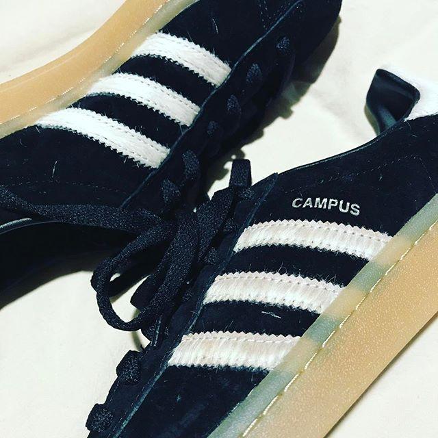 スニーカー購入しました。なぜかスエードばかり増えてしまいます、、#靴磨き女子部 #オノシャルD #adidascampus