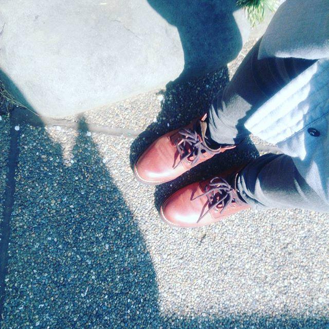 高校受験を控える甥っ子の合格祈願に湯島天神へ。梅の花が綺麗に咲いていました #靴磨き女子部 #shoecaregirls #ハスキー犬 #ハスキーケン #くつのこと #革好き #コールハーン #colehaan #春 #梅の花 #湯島天神 #合格祈願 #mowbraymania#モゥブレィ同盟 HP:@shoecaregirls