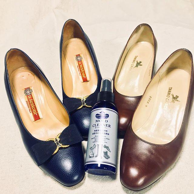 湿気が気になるこの季節︎ 大切な靴をずっと履けるように、早めにカビ予防!#atestoni #taninocrisci #アテストーニ #タニノクリスチー #shoescare #shoecaregirls #パンプス #イタリア靴 #italia #italy #モールド #カビよさよなら #shoe活2018 #靴磨き女子部o